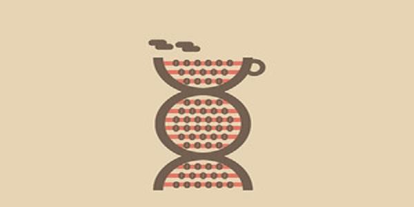 147.caffeine-in-dna-300x200
