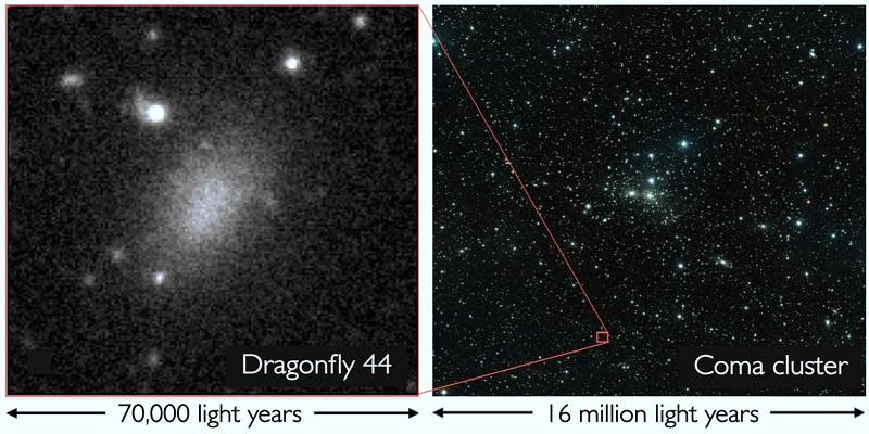 Galaktika-Dragonfly-44
